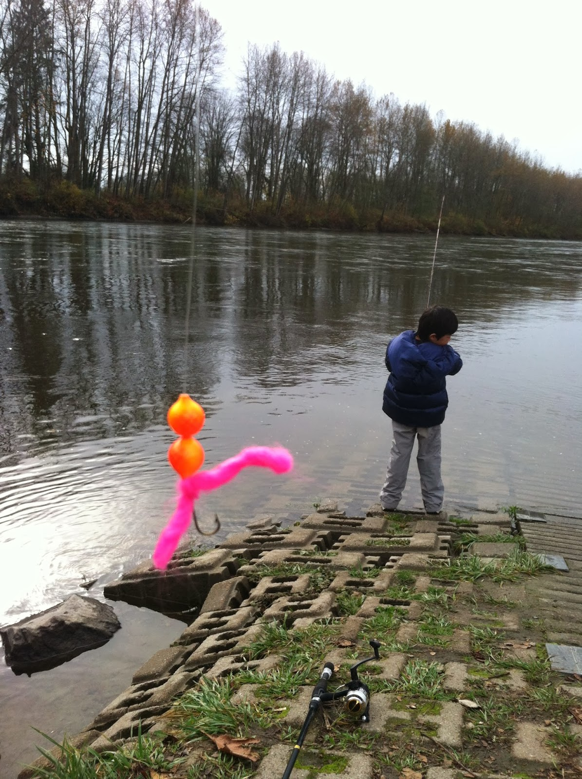 Fishing boy 39 s diary november 2013 for Snoqualmie river fishing