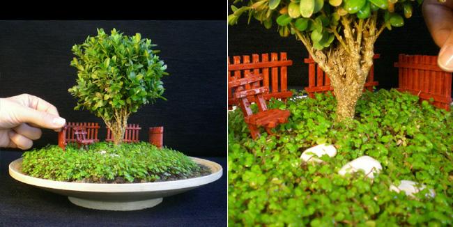 La cyca jardiner a arte y bot nica jardines en miniatura for Jardines japoneses en miniatura
