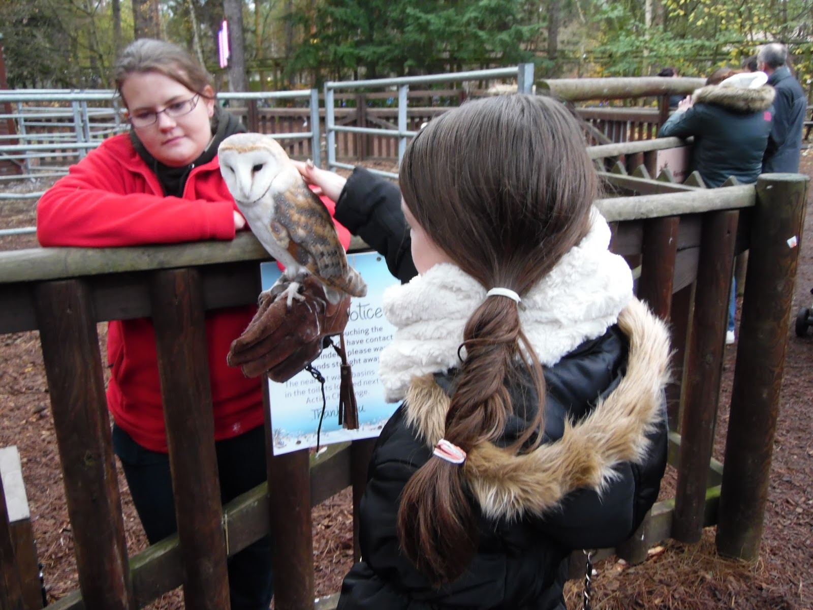 Winter Wonderland Weekend at Center Parcs