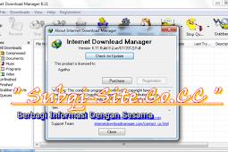 IDM 6.11 Final Build 8 Full Version