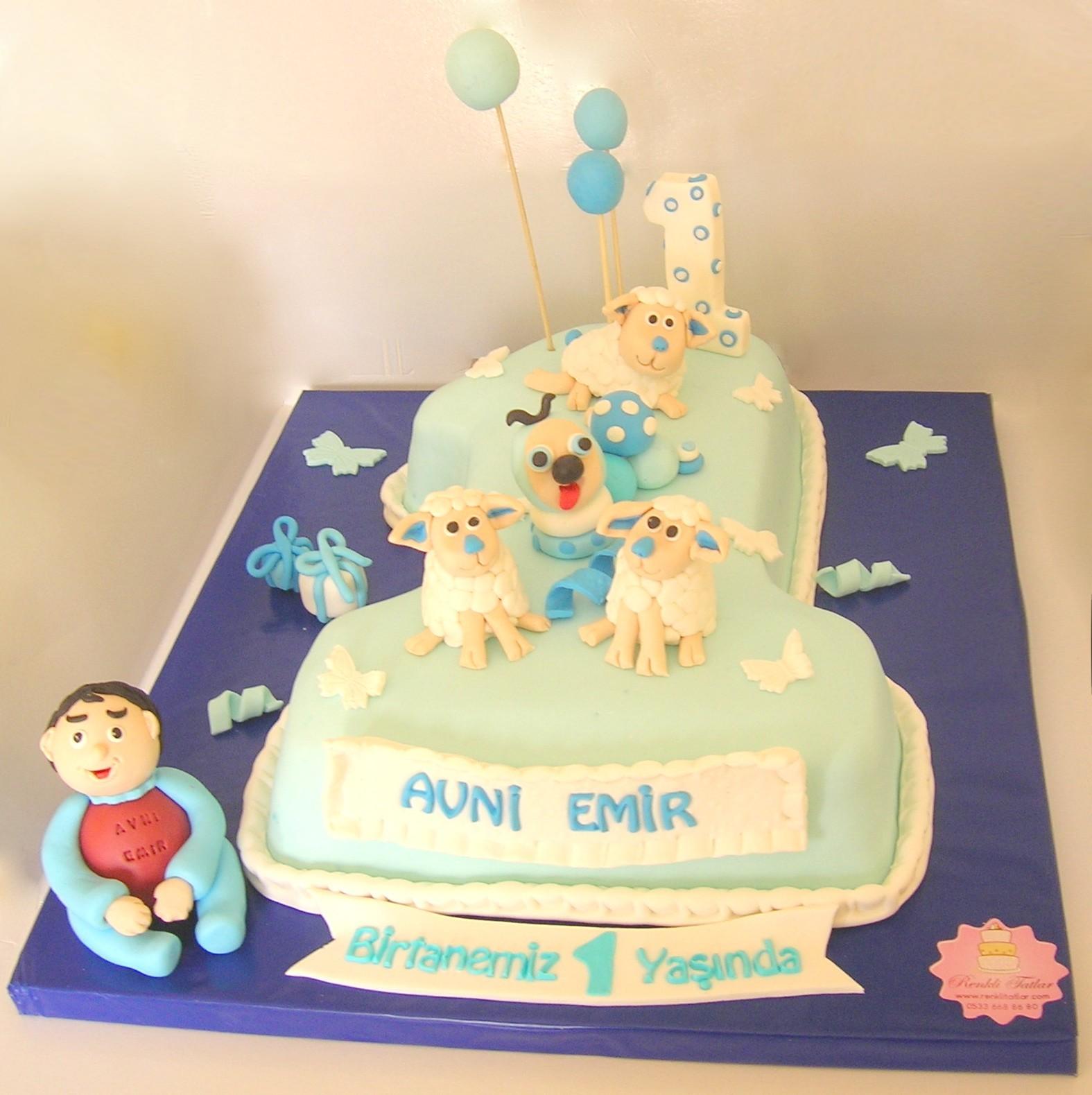 Bir yaş pastası erkek çocuğu