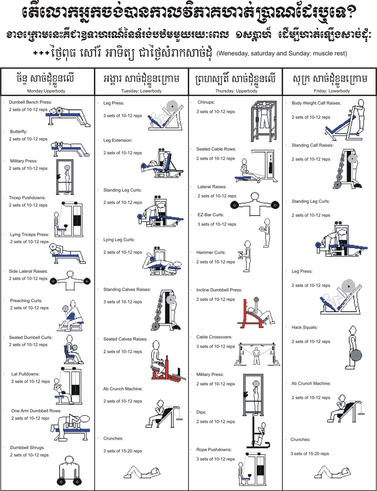 Lean Muscle Exercise Program Images