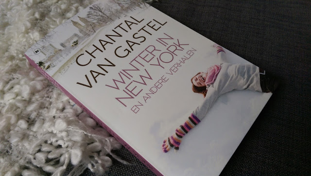 Chantal van Gastel - Winter in New York