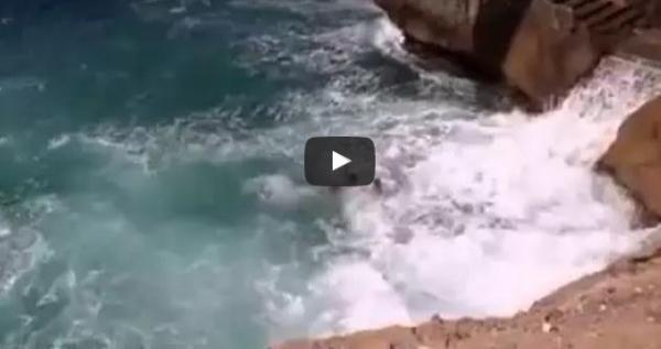 بالفديو : ونعم الرجولة..شاب ينقد صديقه من موت محقق