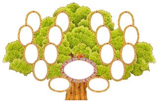Программа Родовое Дерево В Html