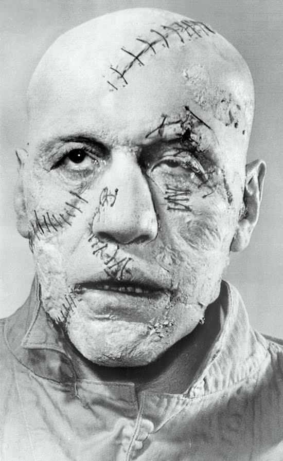 Frankensteinia Frankenstein Blog