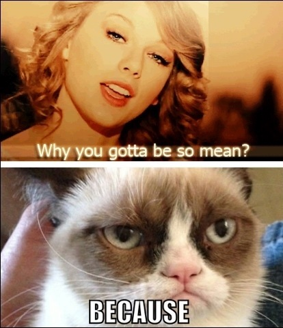 Grumpy Cat Hates Taylor Swift by kidnerdy  Overly Attached Girlfriend Memes Spongebob Memes Beyonce Memes Troll Face Memes Harlem Shake Memes Home