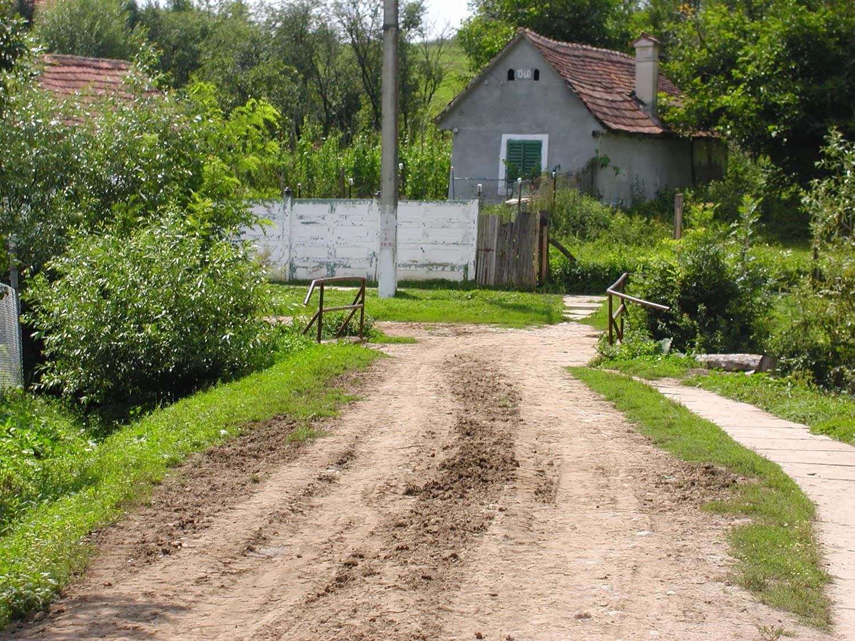 Der steinige Weg zum richtigen Wort — Romahütte in Rumänien