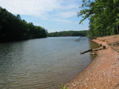 Sights sounds and tastes of the american south august 2015 for Badin lake fishing