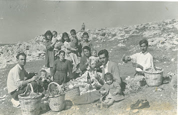 ΚΑΘΑΡΗ ΔΕΥΤΕΡΑ ΣΤΗΝ ΑΛΙΚΗ, ΤΤΟΟΥΛΑΡΑΣ (δεξιά)