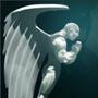 Guardian Angel, Dota 2 - Omniknight Build Guide
