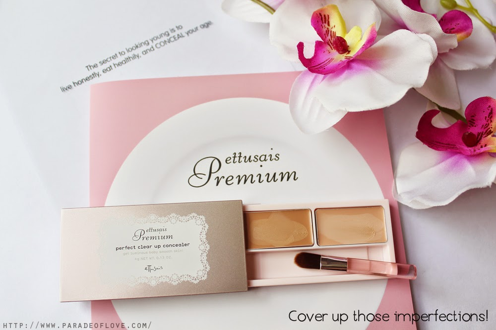 Ettusais Premium Perfect Clear Up Concealer