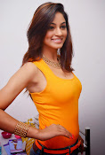 Actress Shilpi Sharma Hot Photo shoot-thumbnail-5