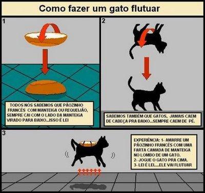 É o efeito paraquedas que salva gatos de grandes quedas Gato_flutuante
