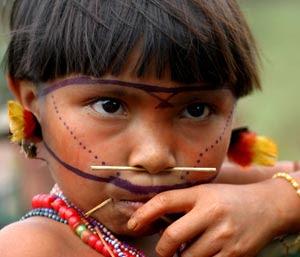 Derechos fundamentales de los pueblos indígenas en la Constitución ...