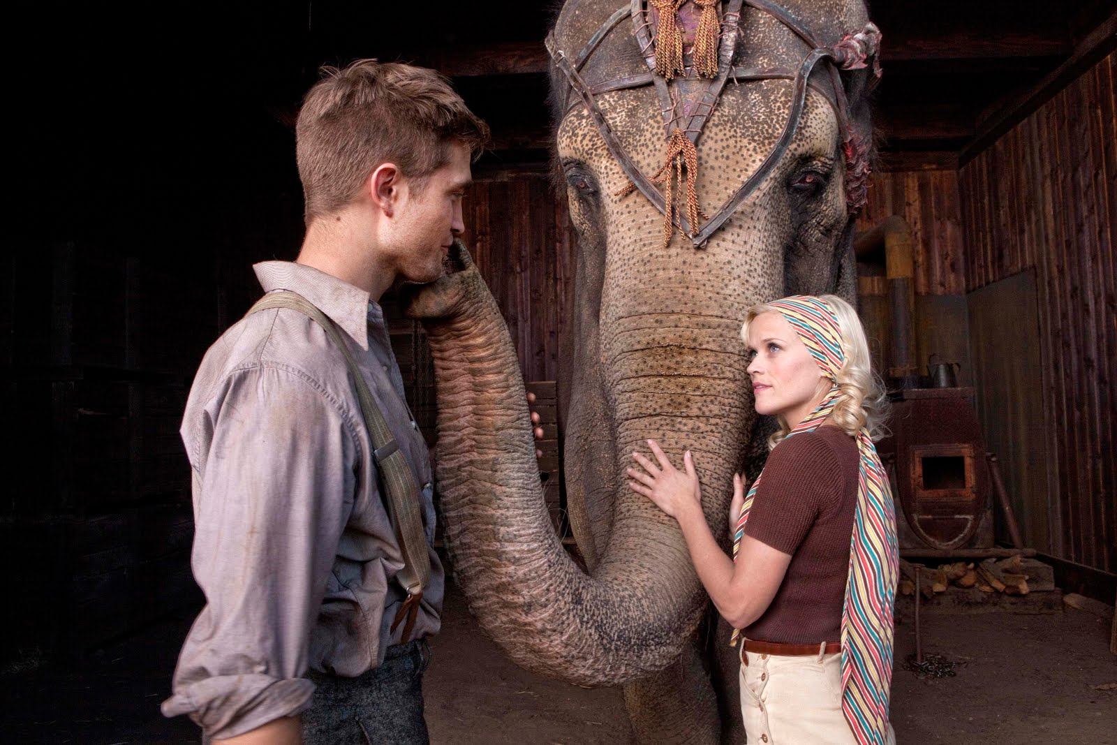 Resultado de imagen de agua para elefantes