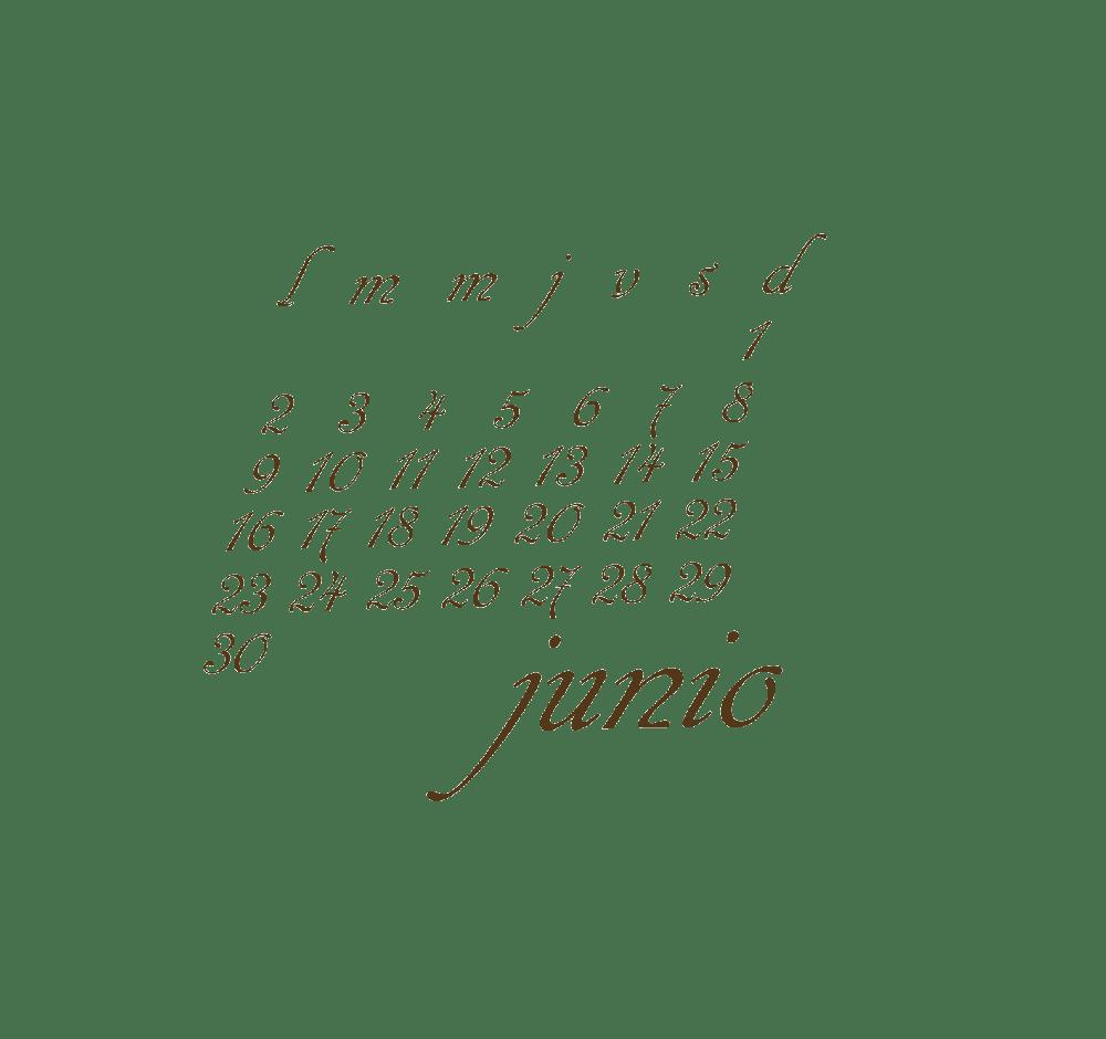 junio_transp