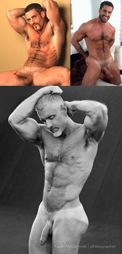 gay male escort service in albany new york