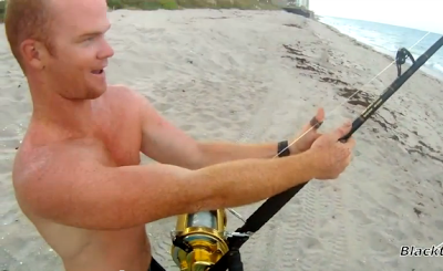 beach+shore+shark+sharks+video+videos+image+images+attack+attacks
