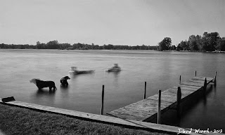 black and white nd filter, lake floating, calm sunny floating lake, cottage lake