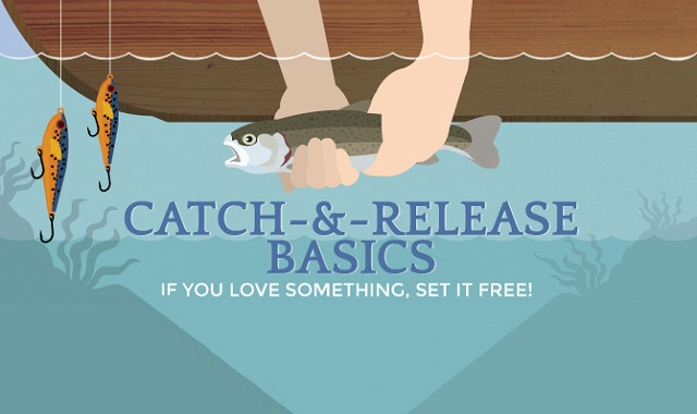 Guide To Catch And Release Fishing If You Love Something
