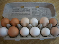Farm Fresh Eggs From Our Chickens