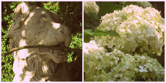 Statues and hydrangeas at Blickling Hall