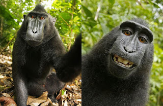 maimou selfie
