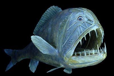 Peixes abissais