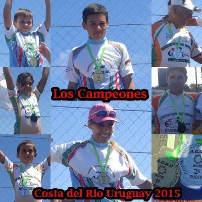 Los Campeones del 2015