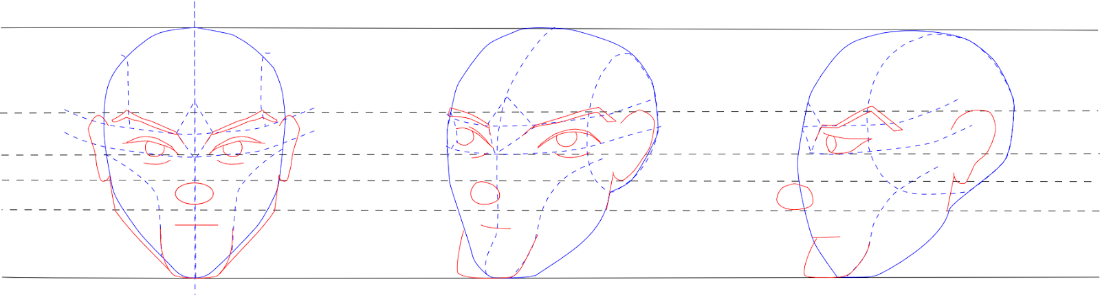 Male Head Features
