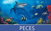 Imágenes de peces de varios colores en el río y en el fondo del mar