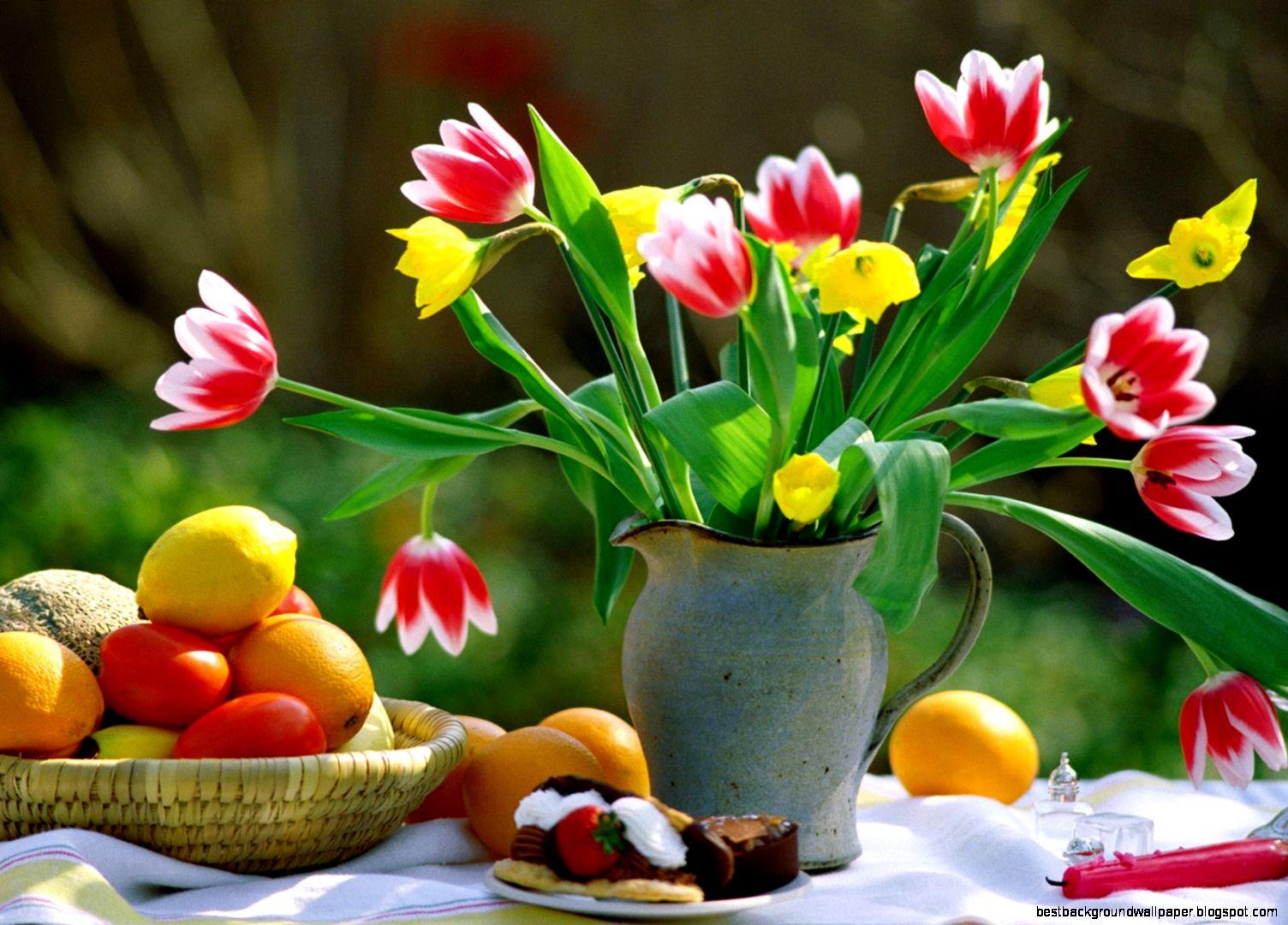 Spring Flower Screensavers Downloads Best Background Wallpaper