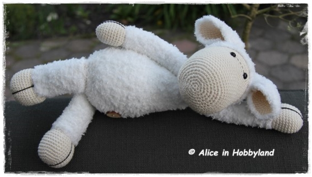 Alice In Hobbyland Schaap Sarah Wolcafe