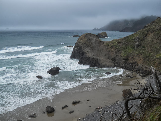 ocean view from Ecola State Park