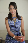 Khenisha Chandran at Jaganatakam press meet-thumbnail-20