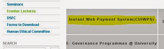 instant payement link in cu site