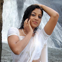 Keerthi chawla in white saree