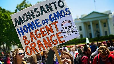 """La """"ley de protección de Monsanto"""" divide el Congreso estadounidense"""
