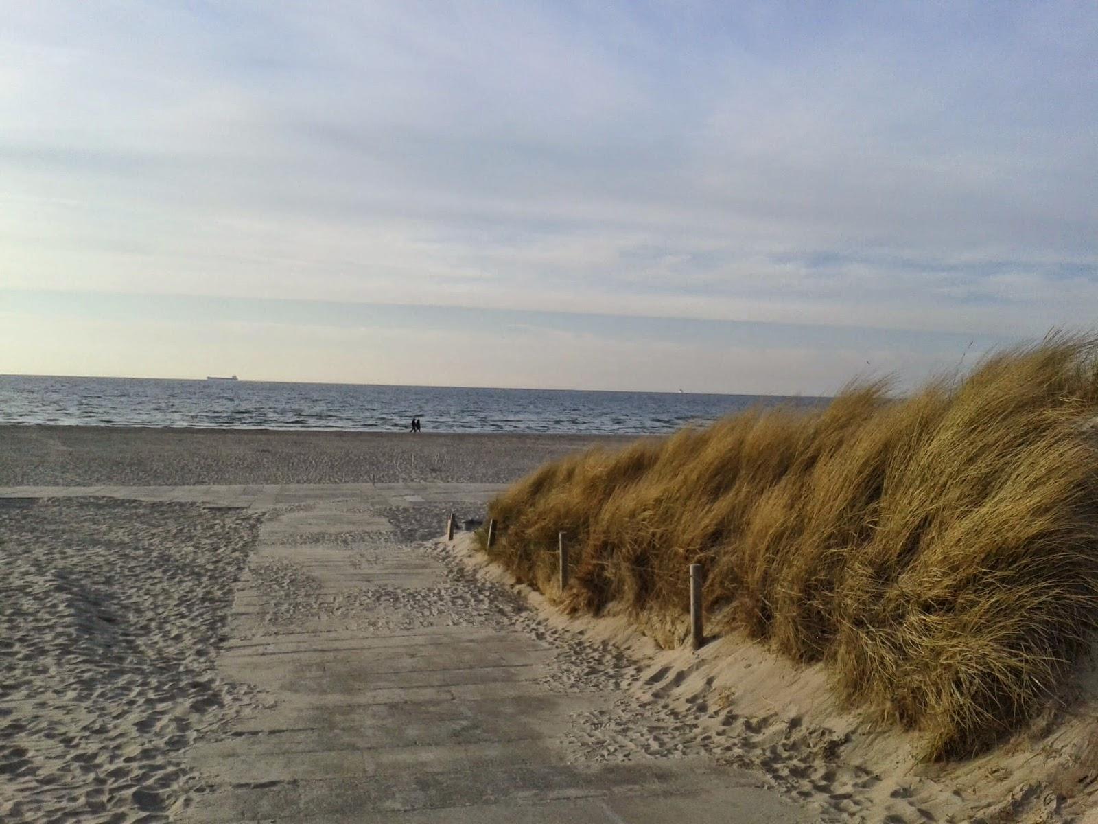 Düne Warnemünder Strand