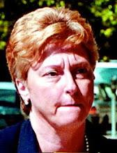 """Judy Fulmer's VIP """"House Arrests"""" per DA Jim Martin"""
