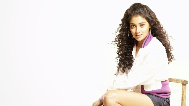 shriya saran 2013 wallpapers hd