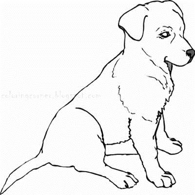 Real Puppy Coloring Pages to Print