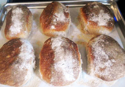 Hot Ciabatta Rolls, fresh out of the oven