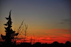 Eine negative Morgenröte...^^