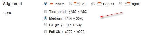 ukuran gambar wordpress