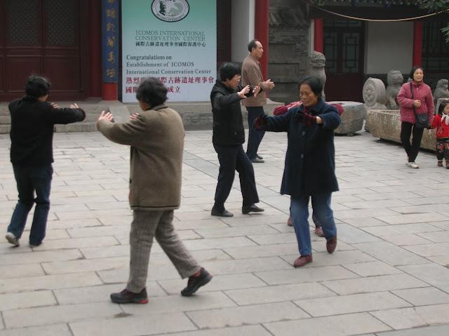 pagoda oca selvatica, xian
