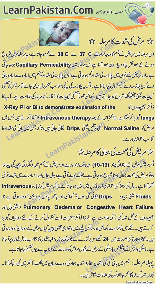 essay dengue fever pakistan urdu Dengue fever includes cause, prevalence, transmission, symptoms, treatment, and prevention in urdu info about dengue fever in urdu source: http://wwwshaukatkhanum.
