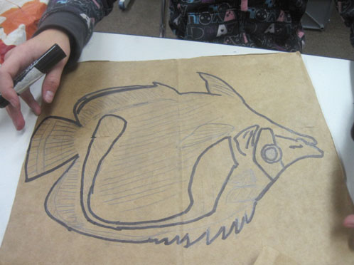 Fish Diagramming with Paper Bags