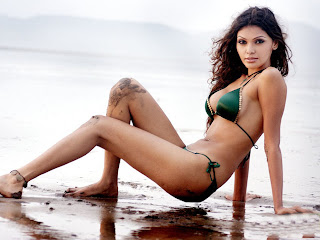 Sherlin Chopra HD Wallpapers